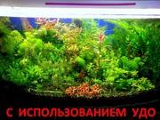 Удобрения(микро,  макро,  калий,  железо) для аквариумных растений=--